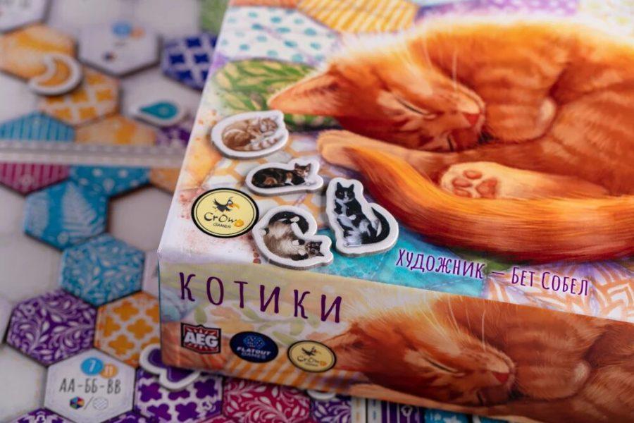 Котики, фото Евгения Храмова